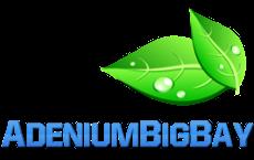 AdeniumBigBay